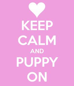 keep-calm-and-puppy-on-4
